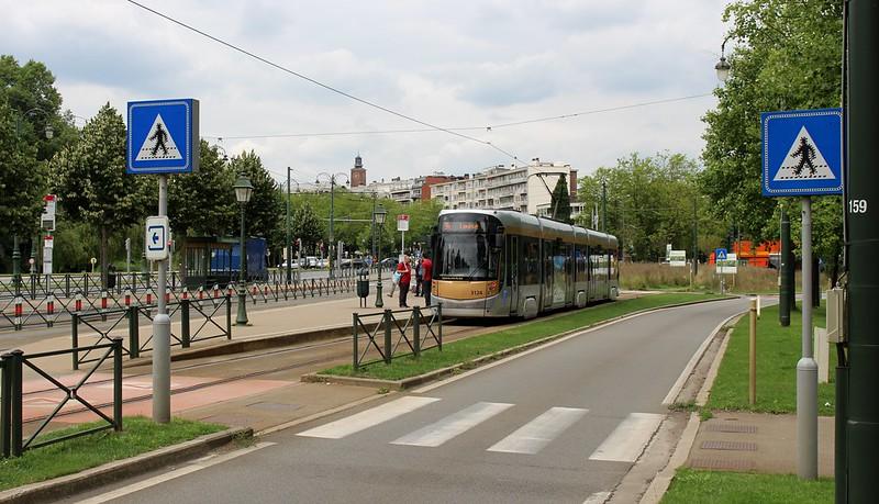 Zebra and tram crossing in Brussels