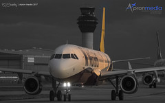 Monarch Farewell