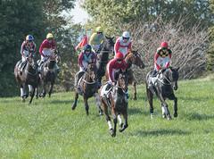 2017 Virginia Fall Races (104)