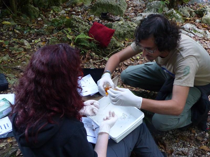 Personas participantes en el voluntariado de ACA analizando las muestras obtenidas en el río