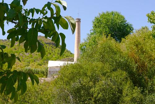 Jardín de la resinera de Fornes