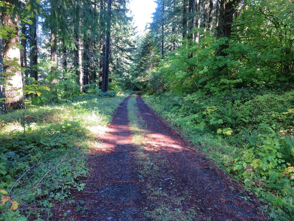 Dead Mountain Road