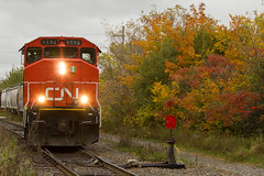 Widecab with Fall Colour - Truro, NS