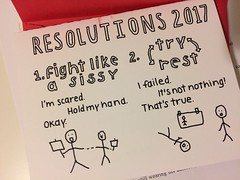 (best) 2017 Resolutions by Amanda Davidson