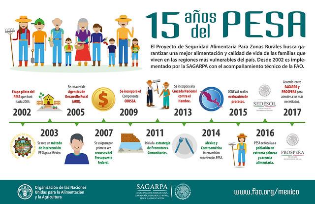Infografía PESA