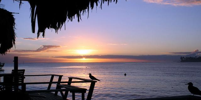 Matin calme avant le chant du coq sur Raiatea la sacrée (Polynésie française)