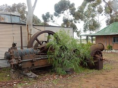 Old Equipment Sprouts a Tree