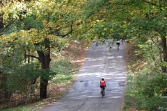 IMG_1512 Saturday - fall colors