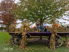 Halloween at Lake Farmpark