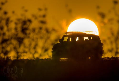 california fjcruiser toyota sunrise mikeoria