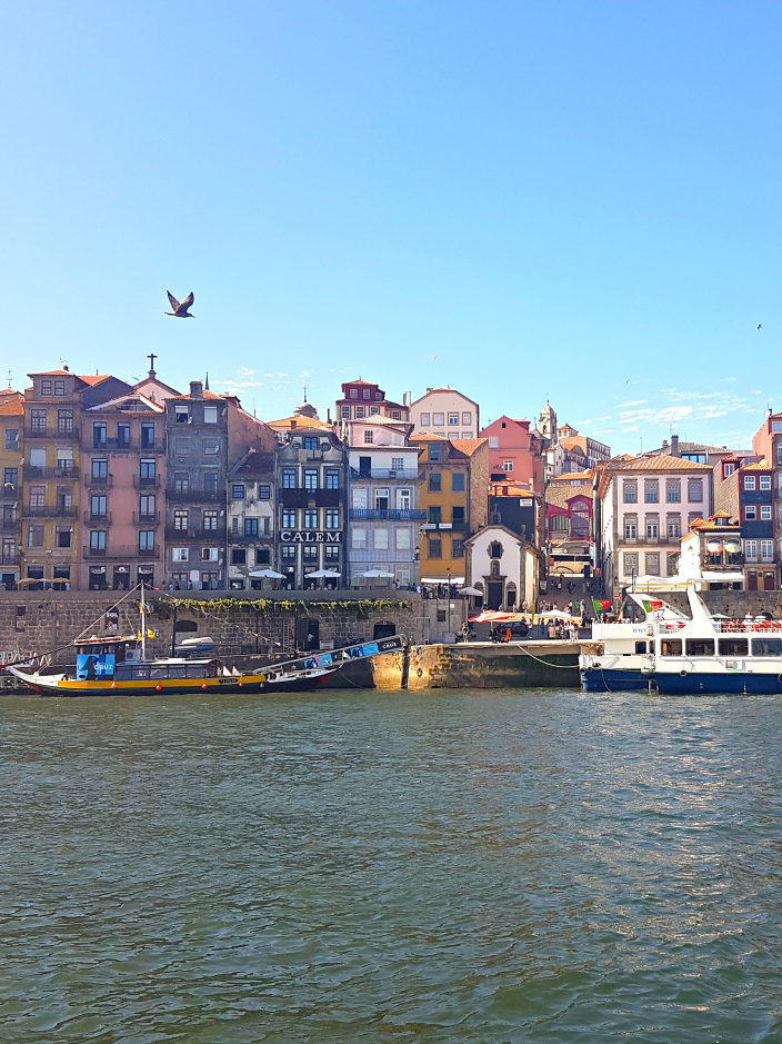 Old Beautiful Porto (020b)