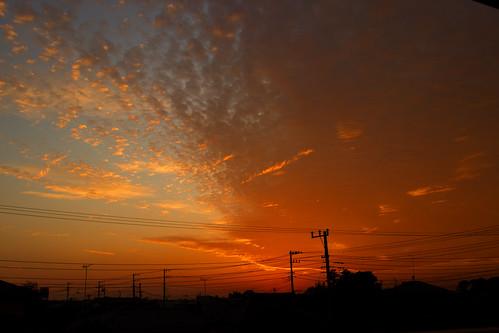 日本 水戸 茨城 日没 雲 屋根 電気 ポール ケーブル 映像 シルエット japan ibaraki sky sunset cloud orange silhouette roof power line 空