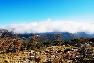 Arcadia near Bassae