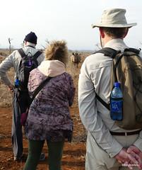 Walking with White Rhino, Mkhaya (13)