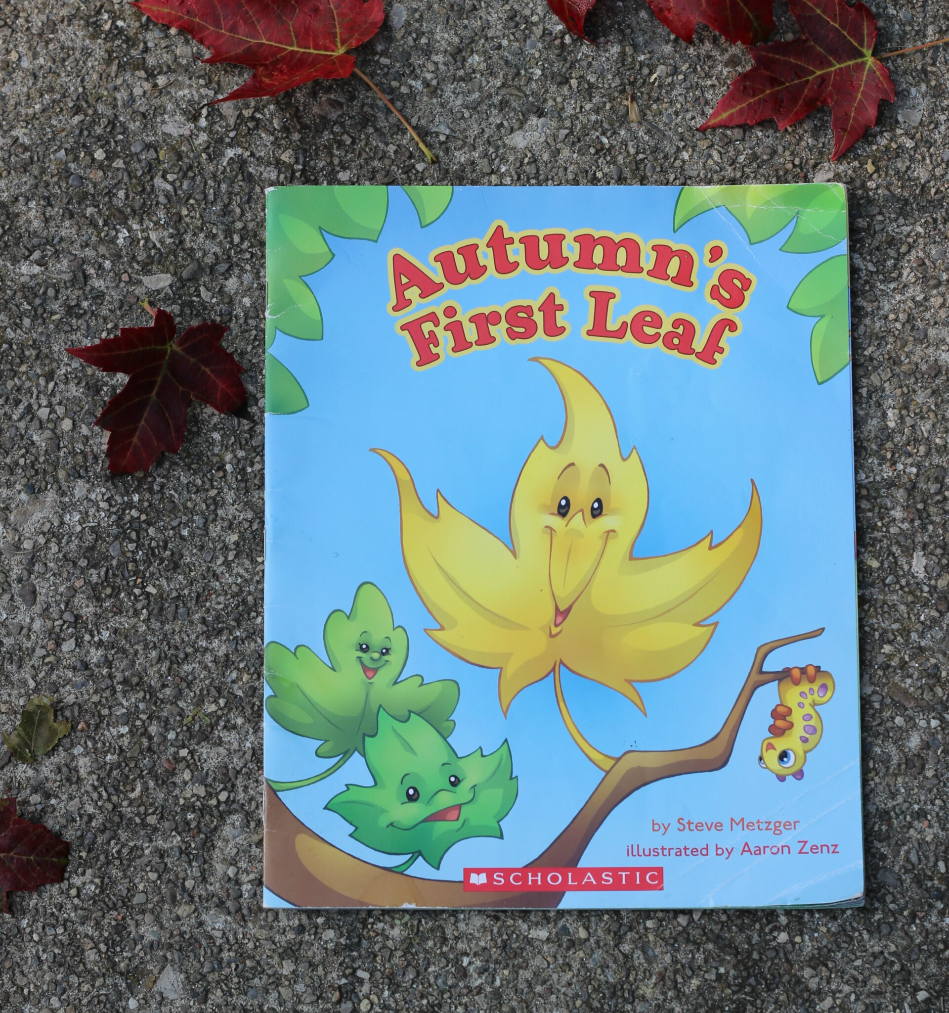 autumns first leaf
