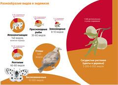 Горы Центральной Азии. Разнообразие видов и эндемизм / Mountains of Central Asia: diversity of species and endemics