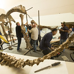 Woolly Mammoth Comes to Life