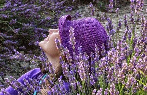 Chapéu-violeta