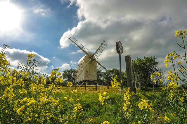 windmill and flowers