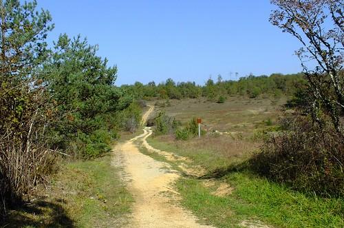 Les causses de Savignac (Périgord blanc)