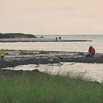 2017-09-15_16-56-05 - Menschen und Hunde am Strand der Insel Fehmarn