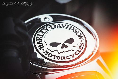 Harley Davidson Logo on fire