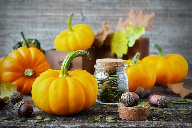...cute little pumpkin