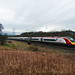 Pendolino in The Valley