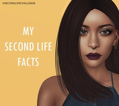 #SecondLifeChallenge – My Seven Second Life Facts