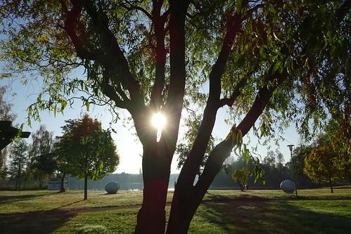 Am Morgen...die Sonne erstrahlt.