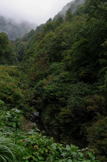 霧わく渓流_201710