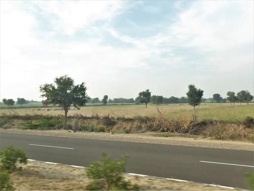 i-jodhpur-mount abu-route  (1)