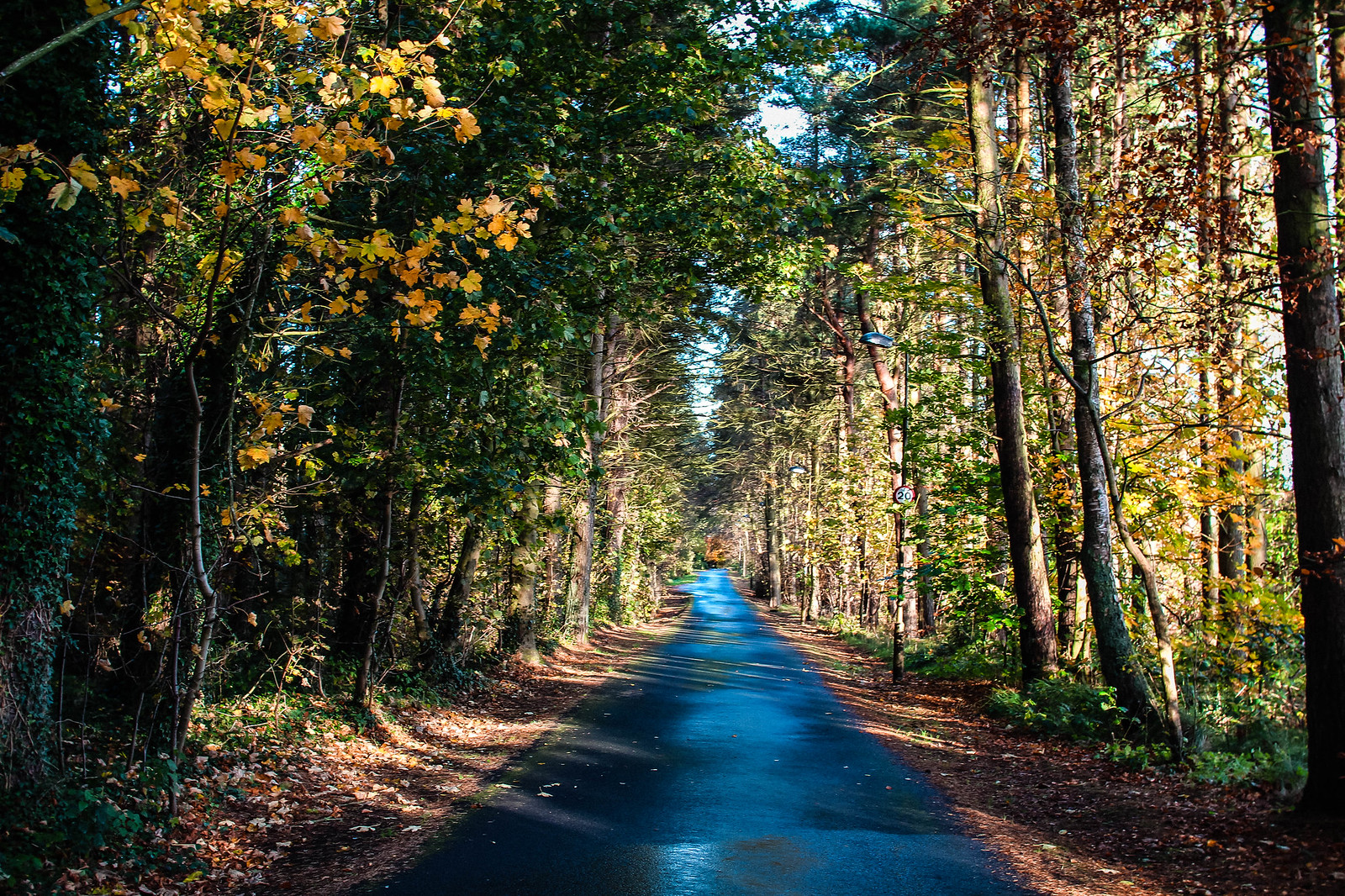 Top things to do in autumn Edinburgh Scotland travel lifestyle blogger UK