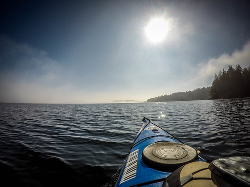 Samish Island Paddling in Fog-15