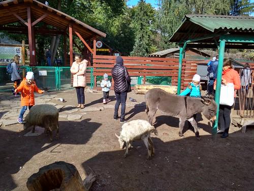 基辅动物园