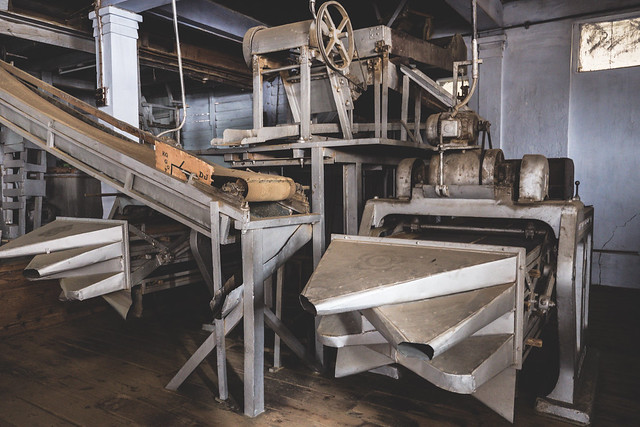 Factory Tour: Inside India's most expensive tea | A tour of Makaibari Tea Estate in Darjeeling India | See beautiful photography of ancient factory equipment or do a homestay with a Nepalese family