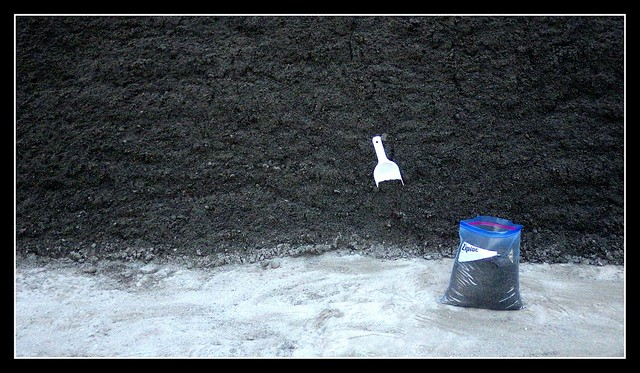 THE BLACK SAND COLLECTOR
