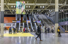 palais des congres world design summit 2017 by eva blue 21
