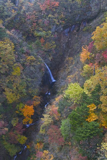 Colors of the Tsubakuro Valley_SDI1845
