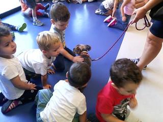Día de las mascotas Novaschool Fuentenueva