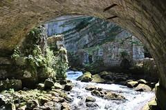 2015-07-05-14-08-42_Les Forts Trotters_dans le Haut Doubs