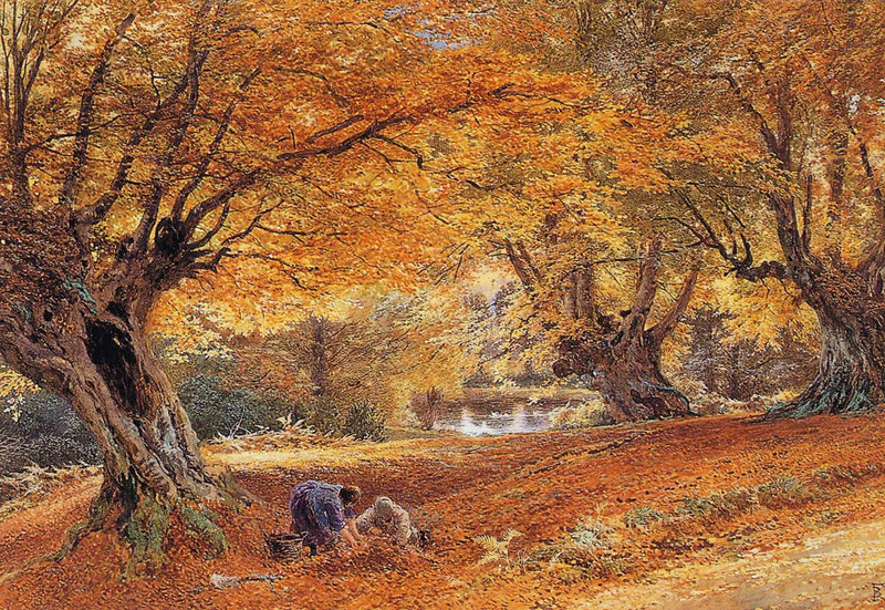 Burnham Beeches by Myles Birket Foster (1825 - 1899)