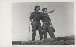 Scouts Point Out Movement of Viet Cong, 31 January 1968