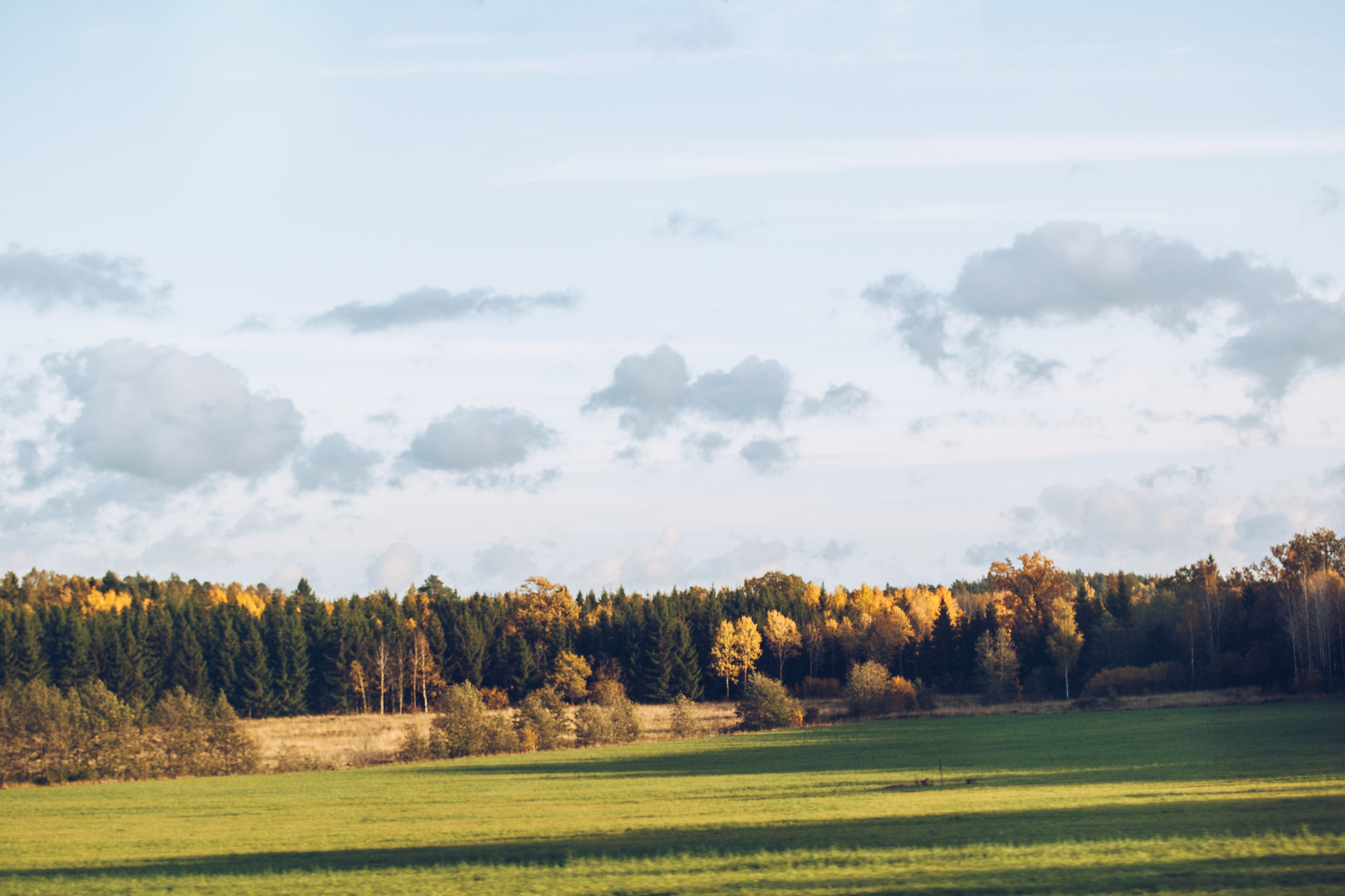 Oktoberhöst - reaktionista.se