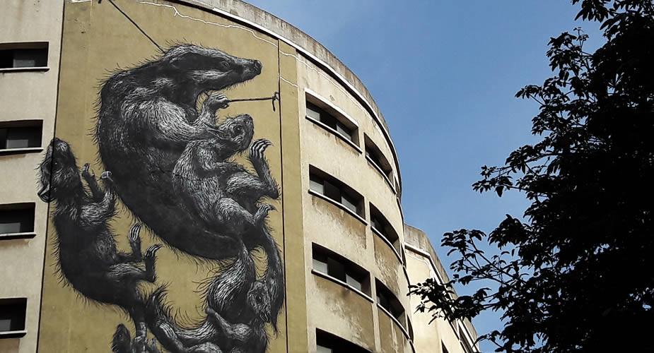 Street art in Malaga: SOHO (ROA) | Mooistestedentrips.nl