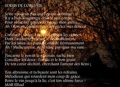 Couché poétique-13_08_12-17-56-50 AIMPSI