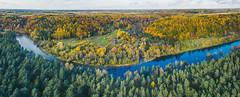Neris Regional Park | Autumn Panorama | Lithuania Aerial #288/365