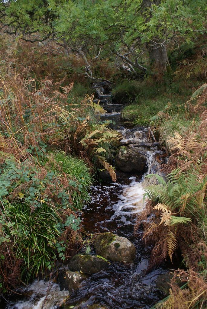 Une petite rivière sur l'île d'Arran.