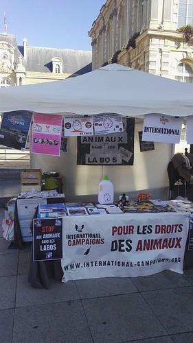 internationalcampaigns a posté une photo:dav