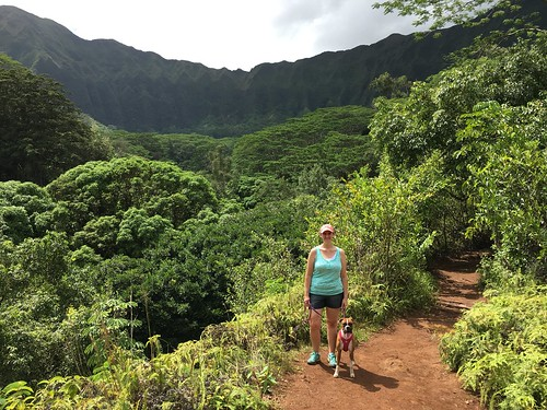 hiking with alohi